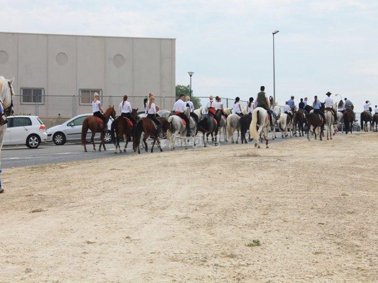Gran grupo montando a caballo