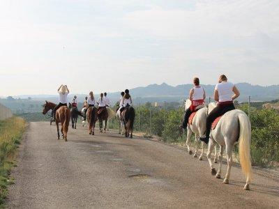 Ruta a caballo cerca de Torrevieja 30 minutos