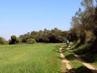 Recorre los bosques catalanes sobre la bici