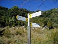 ¿Que camino tomar?