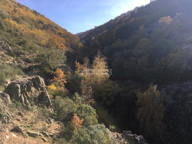 Ruta por la naturaleza