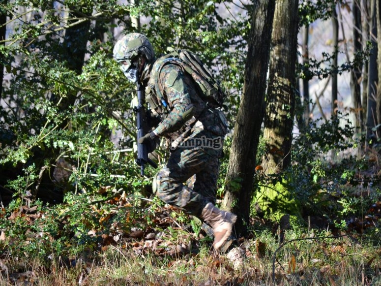 Recorre el bosque de los castaños