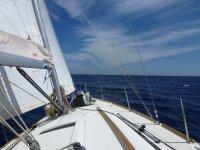Navegando al mar abierto