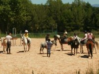 Equestrian activities in the Camp