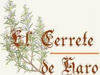 CTR El Cerrete de Haro