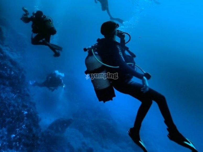 在完全潜水中潜水