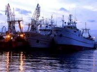 Barche da pesca professionali