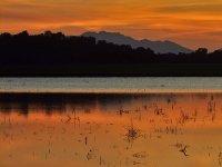 黄昏的夕阳之旅游泳池阳光丽