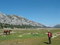 普赫拉栗树林徒步旅行徒步旅行徒步旅行亚诺斯德Libar