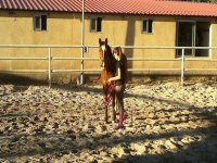Eresma Hipica标志在马厩骑马