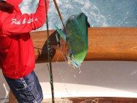 Activité de pêche à bord