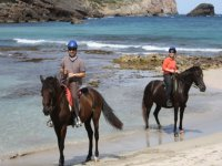 Ride the beach on horseback