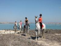 Ruta a caballo cerca de Torrevieja 1 hora