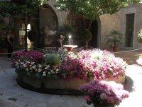 阳台室内花卉园雕刻细节东望洋太阳Literat旅游标志