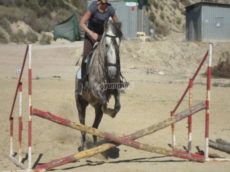 Classe di equitazione privata