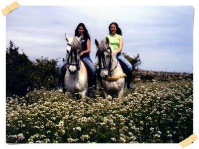 Clase de equitación en grupo, 1 h. zona Torrevieja