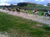 caballos con hipica san yago