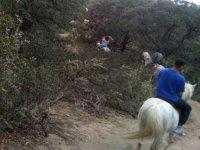 jornada a caballo
