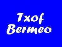 Txof Buceo