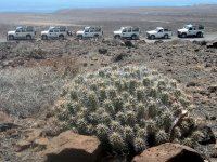 Jeeps throughout semidesertic sights in Canarias