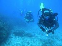 在Cabo Verde潜水