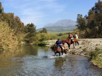 Cavalli che passano il fiume