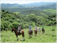 Guidandoci con i cavalli