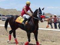 Caballero interactuando con su caballo