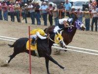 Carrera de caballos veloces