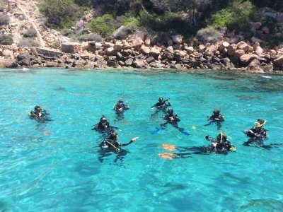 Mar Balear Dive Center