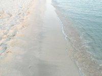 EntreIbizayFormentera海滩岸