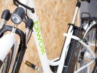 Detalle bici sunray