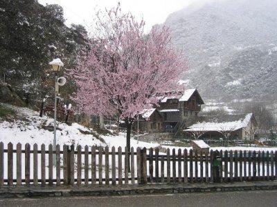 La Borda del Pubill Estaciones de Esquí