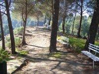 Attività escursionistiche
