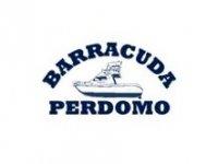 Barracuda Perdomo Pesca