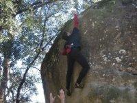 Climber next to the tree canopy