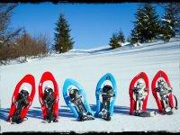 raquetas de nieve
