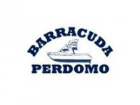 Barracuda Perdomo Avistamiento de Cetáceos