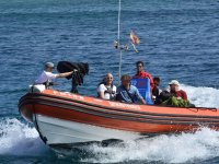 Gita in barca a Fuerteventura