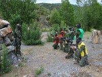 战略和执行彩护栏天然橄榄
