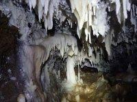 卡斯蒂利亚莱昂的洞穴