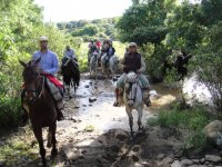 Crossing the creek on horseback