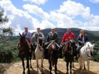 Group horse excursions