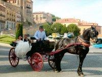 马车租赁婚礼