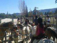 在营地骑马课--999-合作完成hipica.JPG的任务