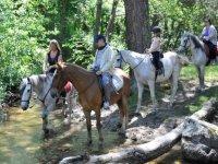 在马背上过河