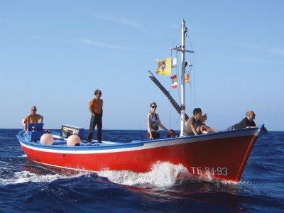Océano Whale Watching Paseos en Barco