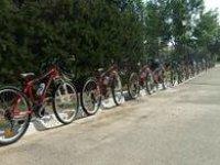 我们的自行车车队
