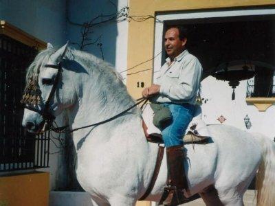 Ruta a caballo 1 hora + alojamiento + desayuno