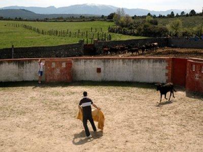 Capea for 400 people, ranch in Ruta del Toro